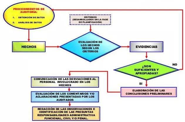 fases de la auditoria