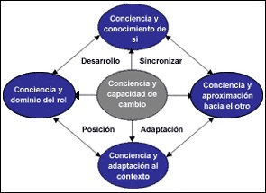 fases del coaching